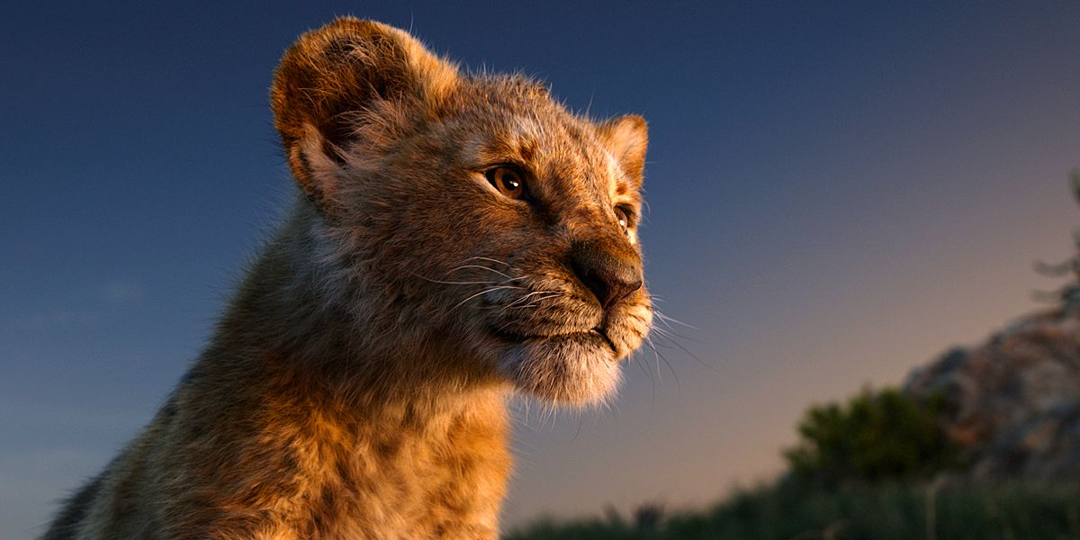 Why Disney Insists The Lion King Remake Is Live-Action   CBR