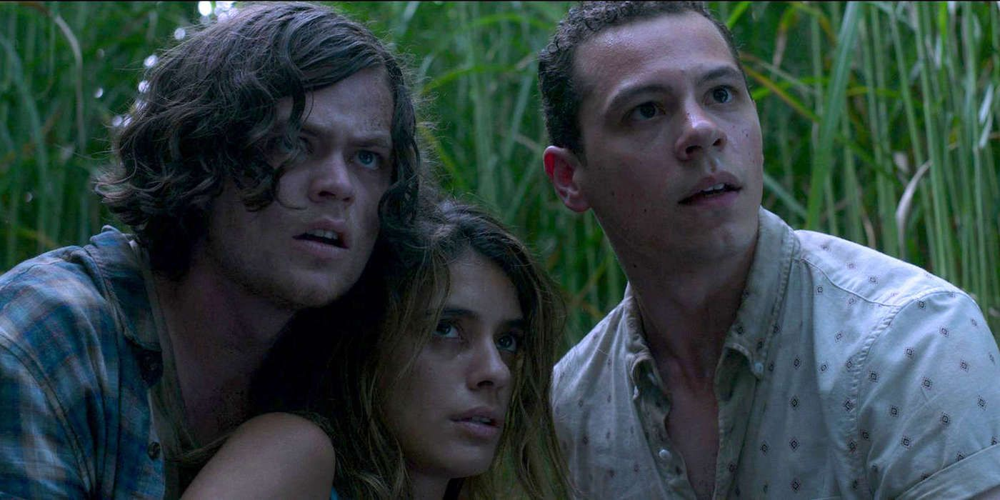 Netflix's In The Tall Grass Finally Gives Us The Happening We Wanted