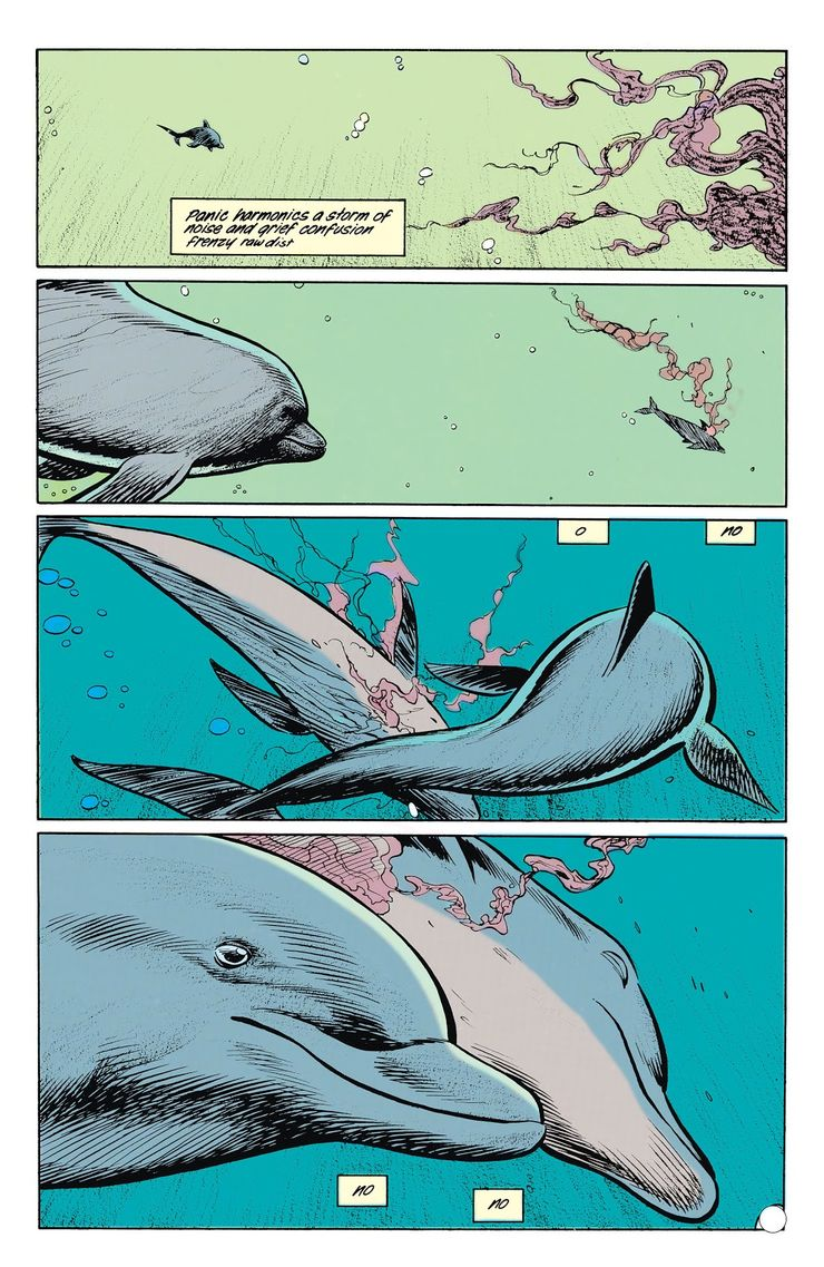 A School of Dolphins Get The Last Word In this Animal Man Classic