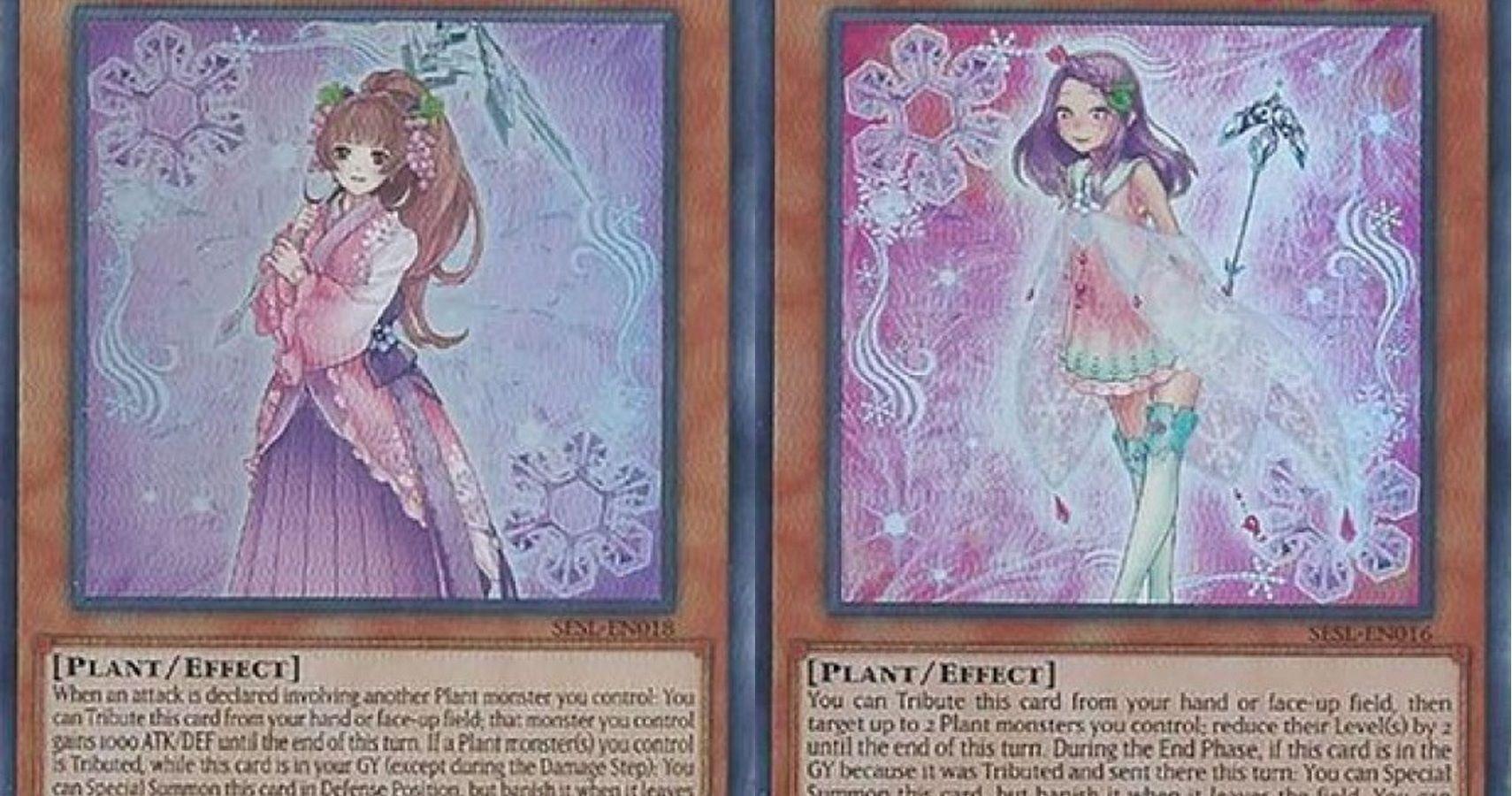 yugioh best rikka cards  cbr