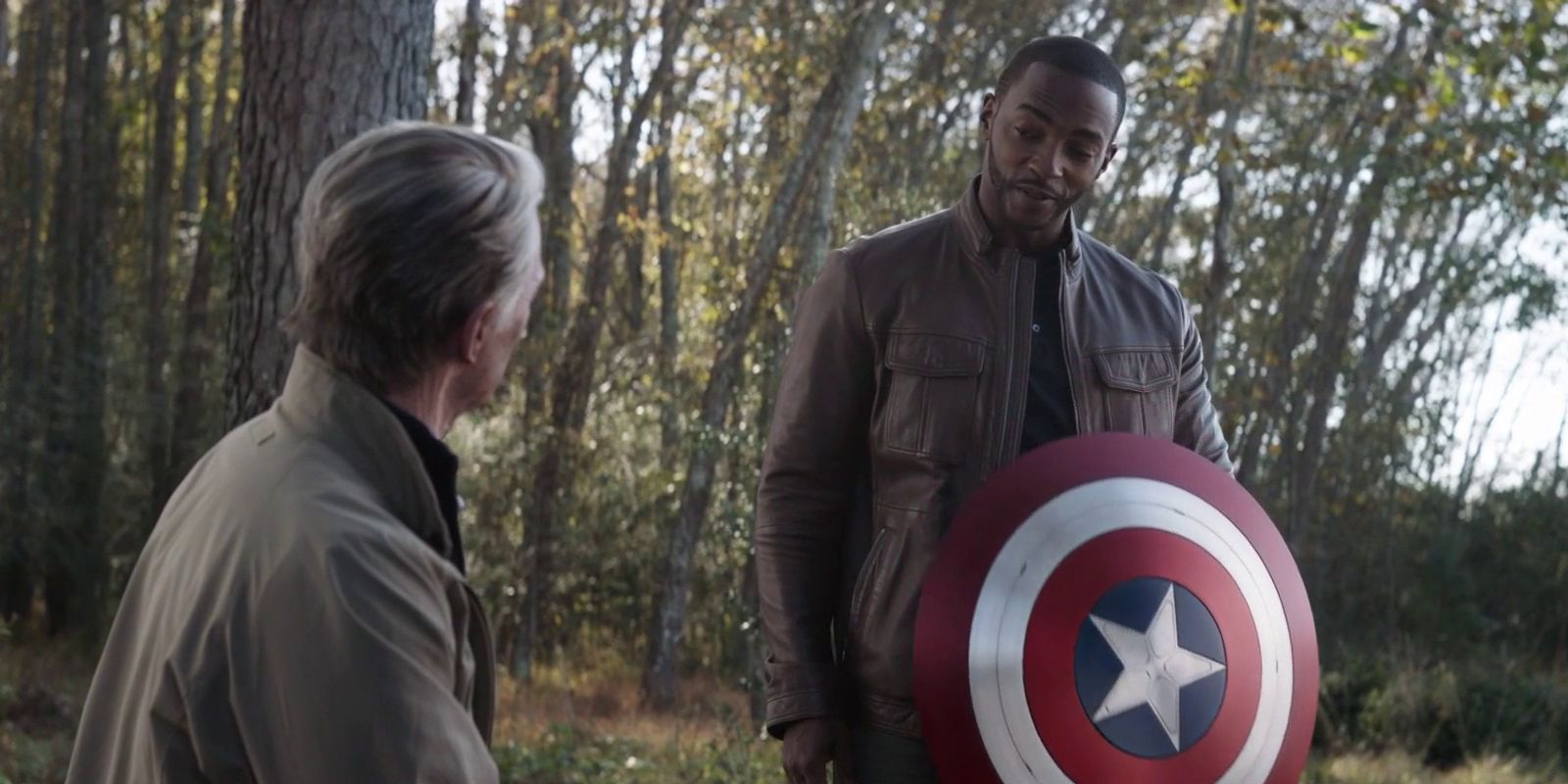 Falcon and Winter Soldier Reveals Bucky's Role in Steve Rogers' Going Back in Time